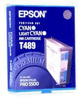 Epson C13T489011 Cyan/Light Cyan T489 Ink Cartridge (110ml)