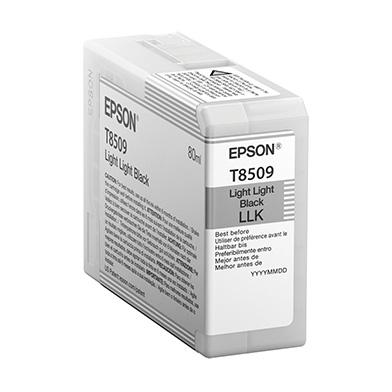 Epson C13T850900 Light Light Black T850900 Ink Cartridge (80ml)