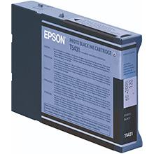 Epson Photo Black Ink Cartridge (110ml)